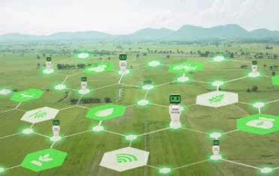 رونق کشاورزی دیجیتال در بحران کرونا