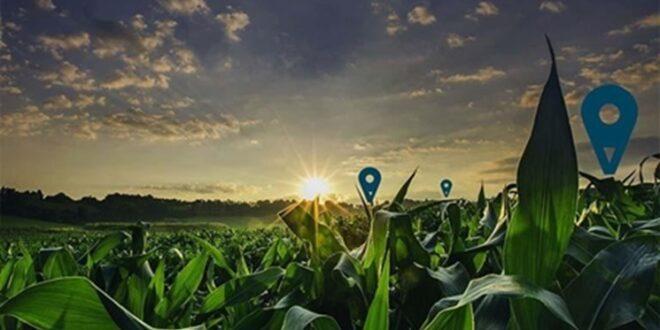 4 شرکتی که با استفاده از اینترنت اشیاء، کشاورزی دیجیتال را توسعه دادند بشناسیم