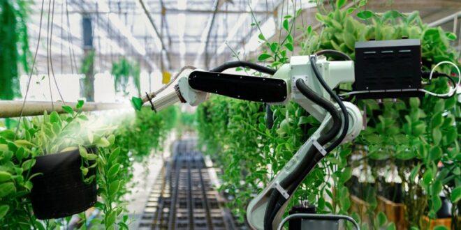 ربات ها و هوش مصنوعی؛ کشاورزان متفاوت آینده!
