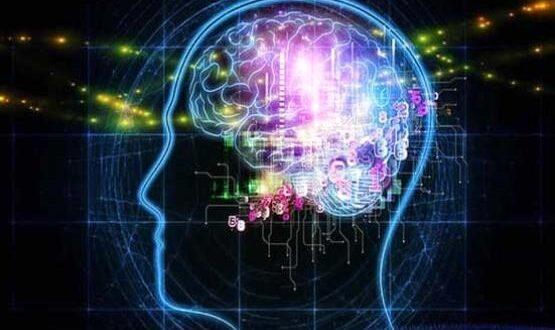 پیشبینی مرگ توسط هوش مصنوعی