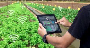 ناکارآمدی آبیاری سنتی؛ اینترنت اشیاء و آبیاری هوشمند زمین های کشاورزی