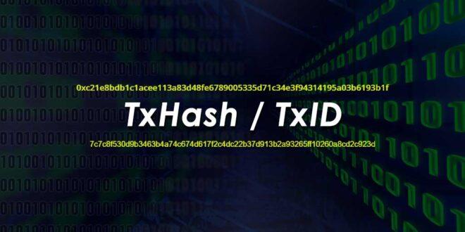 آموزش پیگیری تراکنش ارز دیجیتال؛ TXID یا شناسه تراکنش چیست؟