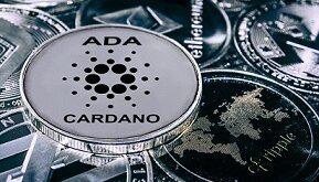 انتقاد جدی از کاردانو پس از بروز اشکال در شبکه آزمایشی